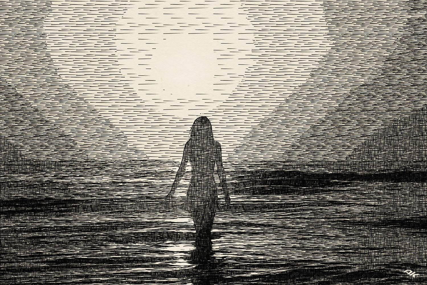 Silhouettes-Engraving-8-copyright-andrew-knutt