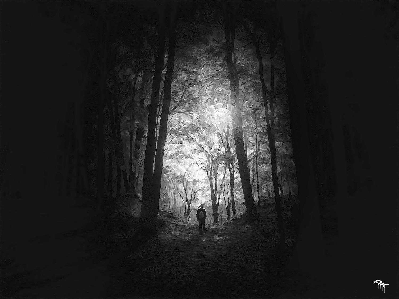in the light-14-copyright-andrew-knutt